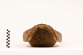 View Carved Wooden Octopus Bowl digital asset number 1