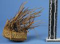 View Materials For Making Baskets digital asset number 6