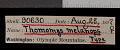 View Thomomys mazama melanops digital asset number 0