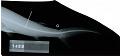 View Carcharhinus melanopterus digital asset number 2