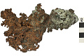 View Native Element Copper digital asset number 2