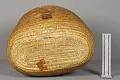 View Basket digital asset number 5