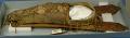 View Comanche Child's Cradle digital asset number 2
