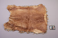 View Robe Of Young Carabou Skin digital asset number 7