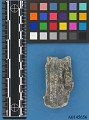 """View Fragment Of Metal From Support Crab Of The N.Y. Obelisk """"Cleopatra's Needle"""" digital asset number 1"""