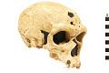View La Chapelle-aux-Saints, Neanderthal Man, Fossil Hominid digital asset number 0