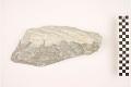 View Sedimentary Rock Limestone digital asset number 1