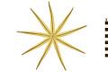 View Nine-armed Sea Star digital asset number 1