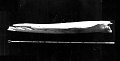 View Eschrichtius robustus (Lilljeborg, 1861) digital asset number 1