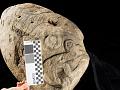 View Hieroglyphic Stone digital asset number 9