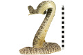 View Eastern Diamondback Rattlesnake digital asset number 3