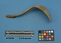 View Horn Spoons digital asset number 19
