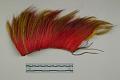 View Hair Headdress (Roach) digital asset number 1