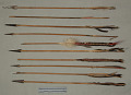 View Bow, Bow-Case, Quiver & Arrows digital asset number 11