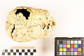 View La Chapelle-aux-Saints, Neanderthal Man, Fossil Hominid digital asset number 8