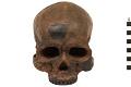 View Cro-Magnon 1, Human digital asset number 4
