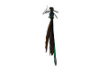 View Ebony Jewelwing, Damselfly digital asset number 3