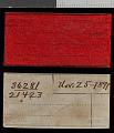 View Sciurus aberti ferreus True, 1900 digital asset number 1