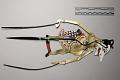 View Five minature wayang kulit (shadow puppets) digital asset number 9