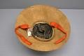View Crest Hat digital asset number 7