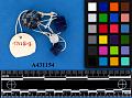 View Blue Glass Beads digital asset number 0