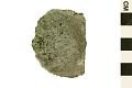 View Strophomenid Brachiopod digital asset number 0
