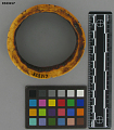 View Ivory Bracelet digital asset number 0