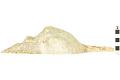 View Panama Horse Conch, Panama Horse Conch, Conch Shell digital asset number 2
