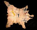 View Buffalo Calf Skin Robe Ornamented digital asset number 1