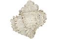 View Murex Shell, Fossil shell digital asset number 2