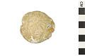 View Heart Urchin, Sea Urchin digital asset number 1