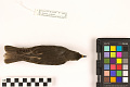 View European Starling, Common Starling digital asset number 2