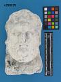 View Head Of Zeus digital asset number 0
