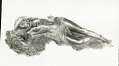 "View Bronze Statuette Of Reclining Woman - ""Sleeping Africa"", by Herbert Ward digital asset number 2"