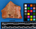 View Red Earthenware Sherd digital asset number 1