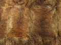 View Possum Skin Cloak digital asset number 19