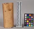 View Birch-Bark Scroll, Writing digital asset number 3