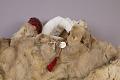 View Clothing Set: Fur Coat digital asset number 8