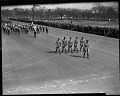 View [Parade along Pennsylvania Avenue, Washington, D.C.] [cellulose acetate photonegative] digital asset: untitled