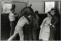 View Frank Paulin Photoprints digital asset: 1. Belmont Racetracks