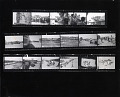 View Leonard Nadel Photographs and Scrapbooks digital asset: 2004.0138.58.01, Photographer Leonard Nadel's original contact sheet of roll #1 in his bracero documentary project - 17 frames of braceros being inspected at the Monterrey, Mexico processing center.