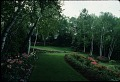 View Rudy J. Favretti collection digital asset: Steele-Stoddard-McDonough Garden