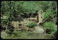 View Rudy J. Favretti collection digital asset: Garden Images