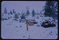 View John M. Fogg photographic slides digital asset: Washington -- National Arboretum