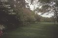 View Dallas -- Harlan Crow Garden digital asset: Dallas -- Harlan Crow Garden