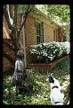 View Dallas -- Phelps Garden digital asset: Dallas -- Phelps Garden
