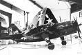 View Curtiss SB2C-5 Helldiver digital asset number 28