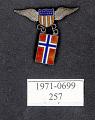 View Pin, Lapel, Norway digital asset number 1