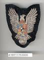 View Badge, Bomber Pilot, Romanian Air Force digital asset number 1