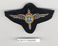 View Badge, Pilot, Romanian Army Air Force digital asset number 1
